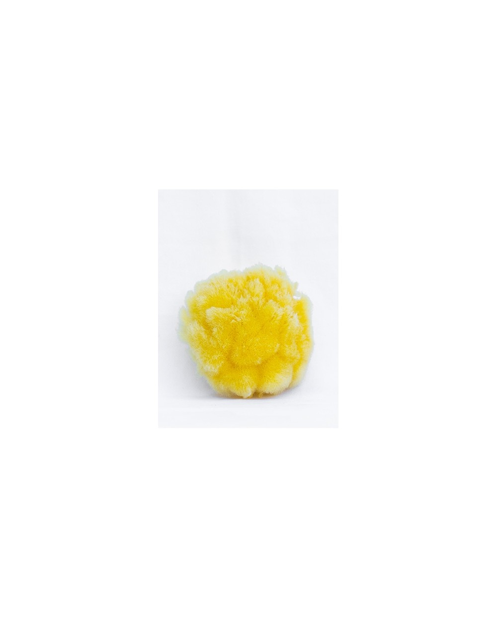10 cm Natural Mediterranean Sea Sponge ZIMOCA (processed) Siciliana.lt